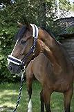 Covalliero 3211600 Pferdehalfter mit Webpelz, Größe 2, blau