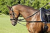 USG Ausbinder Nylon mit D-Ringen Größe S (Pony)