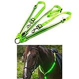 Bweele LED Pferdegeschirr,LED Brustgurt Pferdegeschirr mit LED Licht Punktlicht Pferdegeschirr...