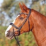 Kieffer Trensenzaum Amy Ultrasoft schwarz schwedisches Reithalfter, Größe Pferd:Warmblut