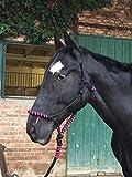 Knotenhalfter mit Strick für Pferde – gepolstert an Nase und Genick, ideal für Bodenarbeit,...