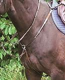 MELZER Vorderzeug Bad Harzburg Farbe: braun/Silber Größe: Pony