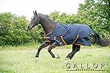 Gallop Pferde-Outdoordecke 100g Kein Hals, EU 160cm
