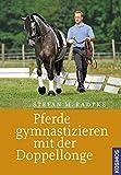 Pferde gymnastizieren mit der Doppellonge