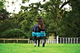 Horseware Amigo Mio Turnout Lite ohne Füllung Regendecke Black & Turquoise 115-160 (155)