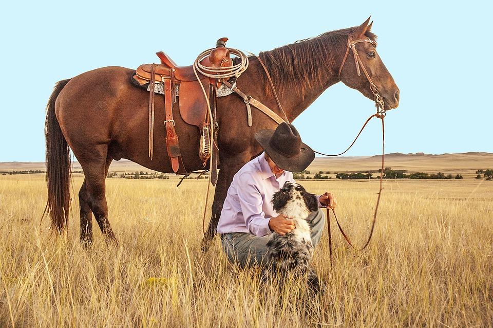 Cowboy Pferd mit Westernsattel