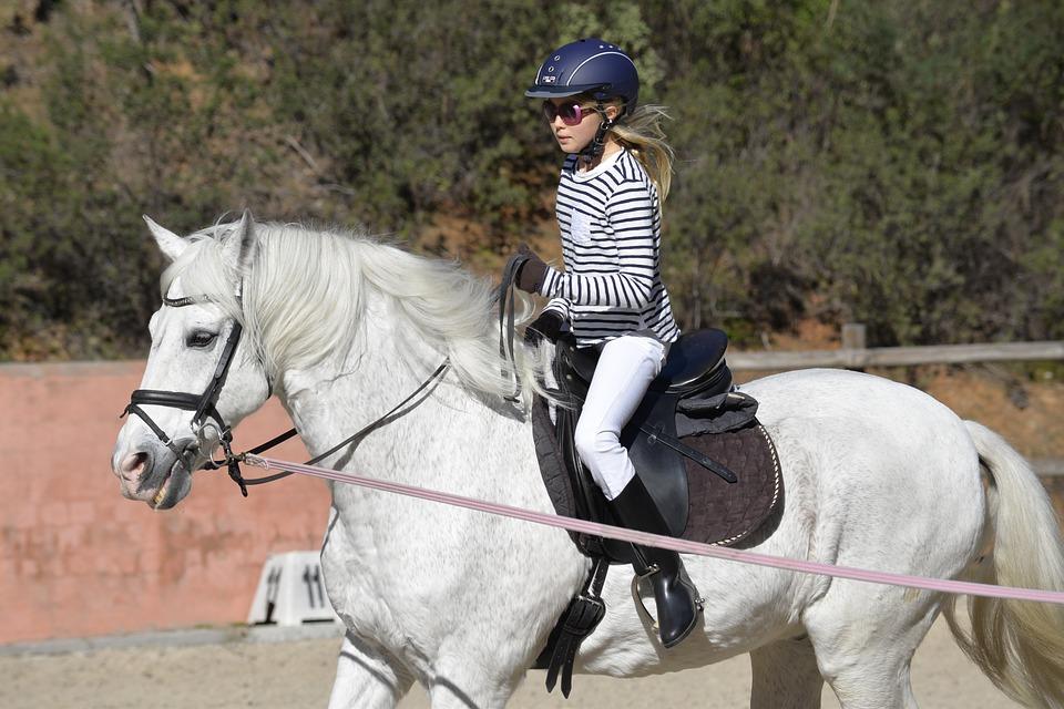 Sattelunterlage beim Pferd